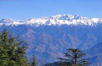 Как гуси перелетают через Гималаи